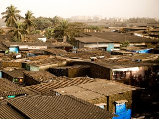 A year on from Dharavi